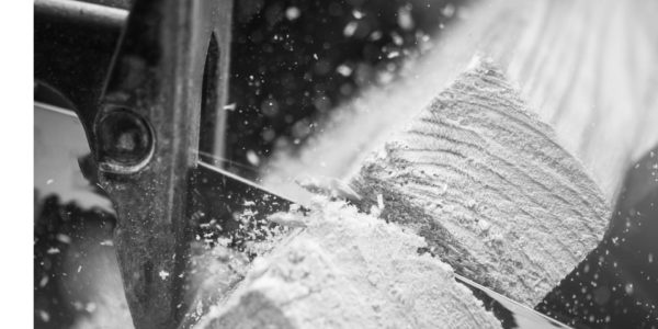 Szablaste - recip - sabre - blade for wood cuting-v.02